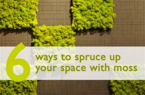 6 easy ways to spruce up your patio this insolroll 28 6 ways to spruce up 6 ways to spruce up your seasonal social media and get 6 easy ways