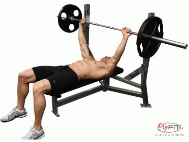 bench press definition chest anatomy and with exercises of all types