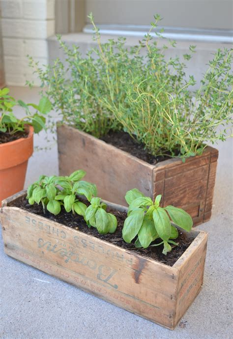 herb boxes diy herb garden with vintage boxes