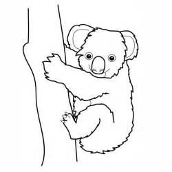 77 dessins coloriage koala 224 imprimer sur laguerche 7