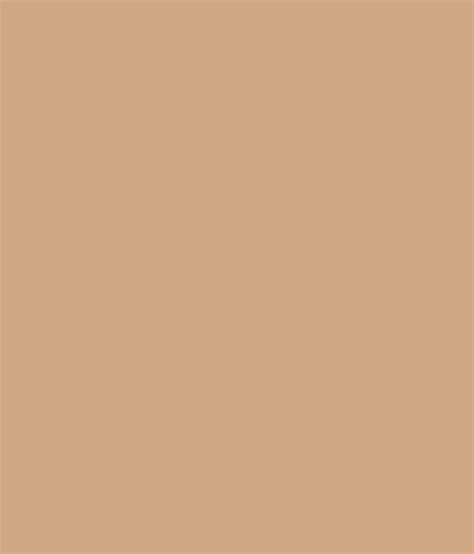 sandstone color asian paints paint color ideas