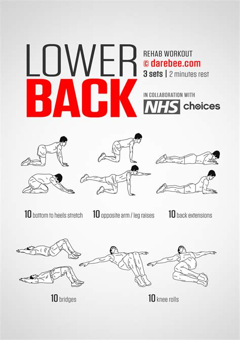 lower back workout