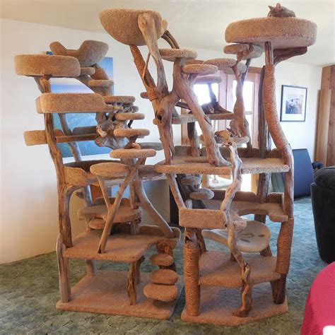 custom tree custom driftwood cat tree