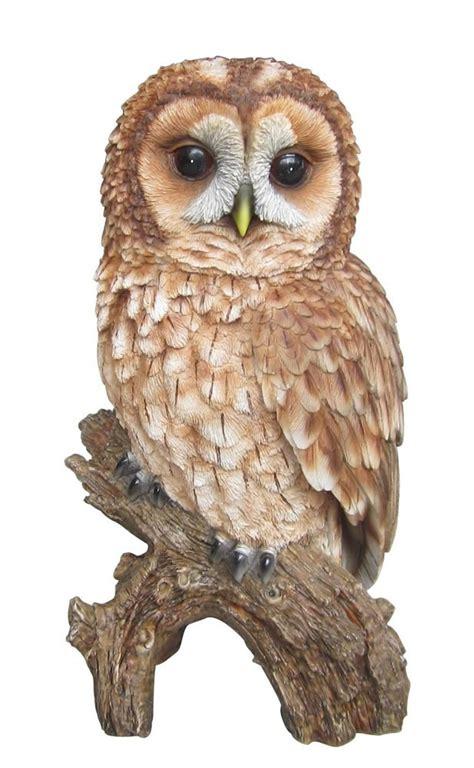 vivid arts real life tawny owl size b vivid arts