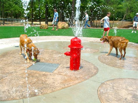 puppy park to with beneful park opening day