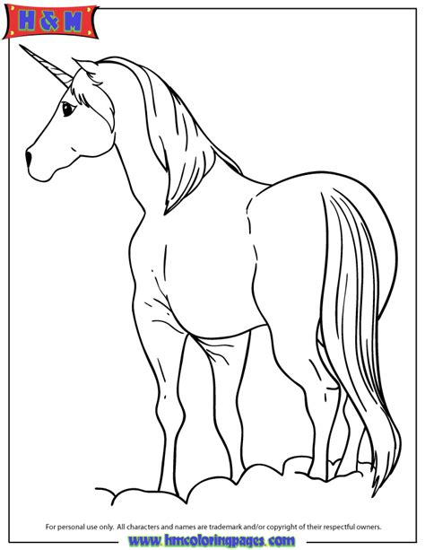 unicorn pony coloring pages unicorn horses coloring pages
