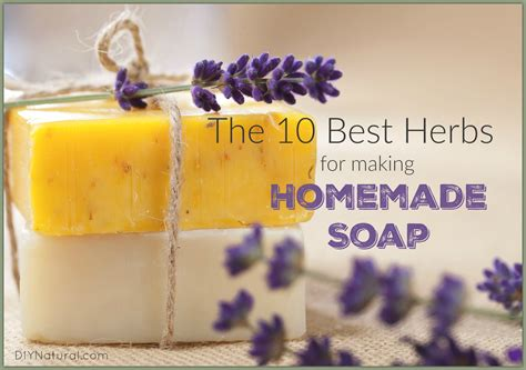 Handmade Organic Soap Recipes - soap the best herbs to use in your recipes