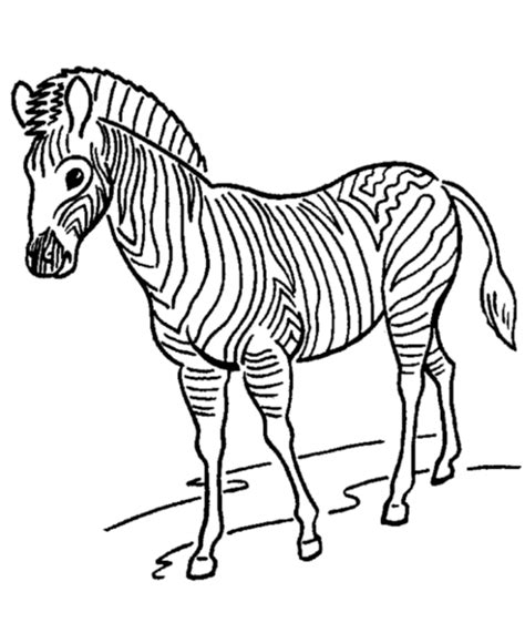 Zoo Animal Coloring Pages   Zoo Zebras Coloring Page and
