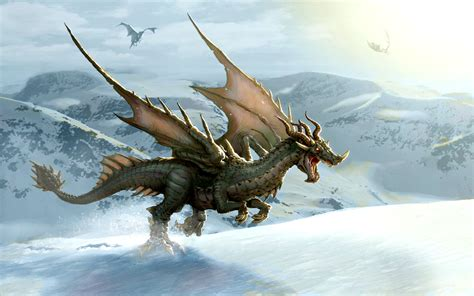 the dragon the dragons images dragon wallpaper wallpaper photos 13975578