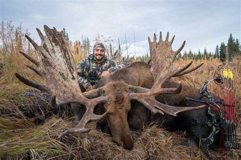 moose hunting  fall worldwide trophy adventures