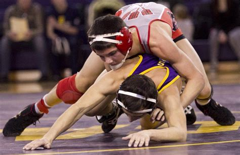 section 2 wrestling rankings michigan high school division 2 wrestling individual