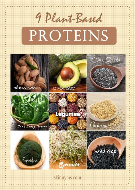 p protein in plants 87 best images about plant based protein charts on