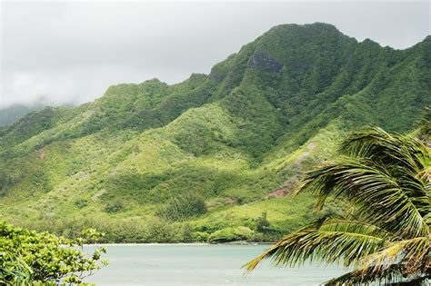 Landscaping Oahu Oahu Landscape By Vince Cavataio Printscapes