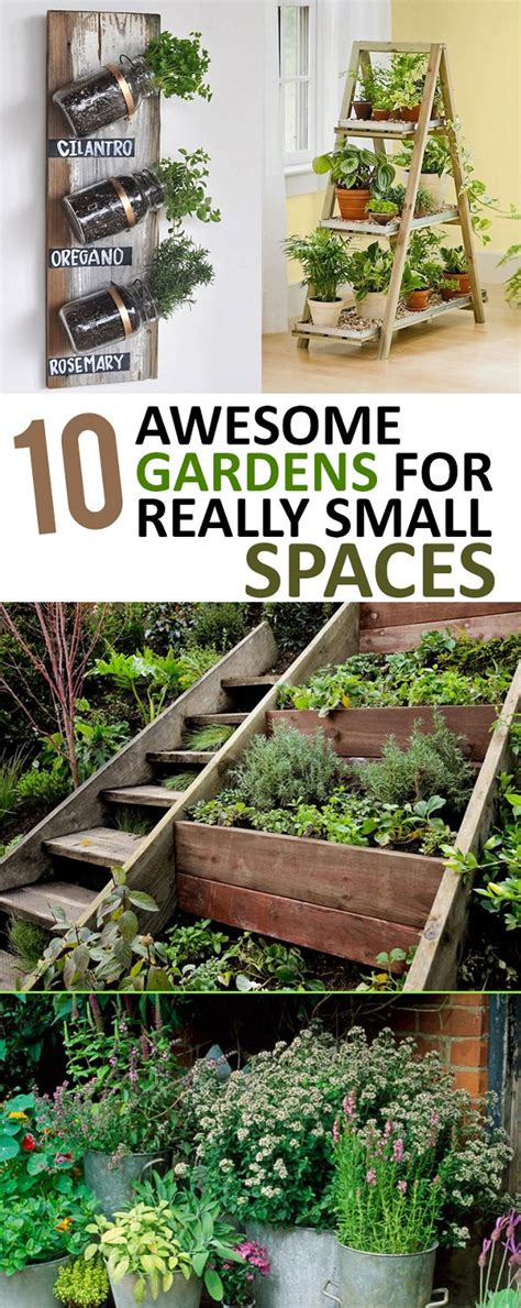 10 awesome gardens for really small spaces gardening viral