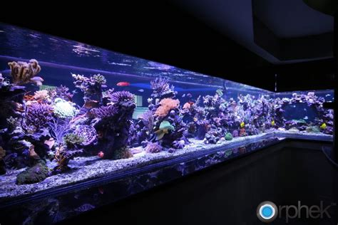Reef Led Lighting 301 moved permanently