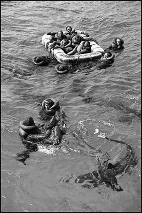 rescue indiana dumbo pby saved 56 uss indianapolis sailors from