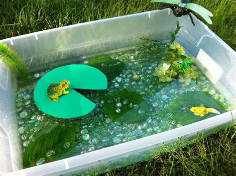 how to build a frog pond in your backyard image gallery homemade frog habitat