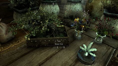skyrim home decorating house decorations plants and flowers traduzione