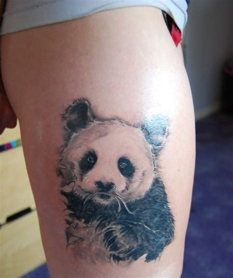 panda wolf tattoo 70 best tattoo ideas images on pinterest tattoo ideas