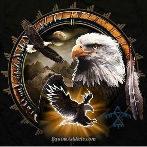 Kaos 3d Soulpowerstyle Bald Eagle 33 best eagle t shirts images on eagles bald