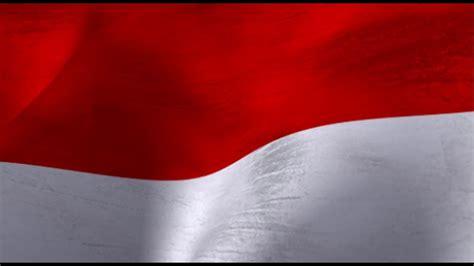 bendera merah putih loop animasi background bendera