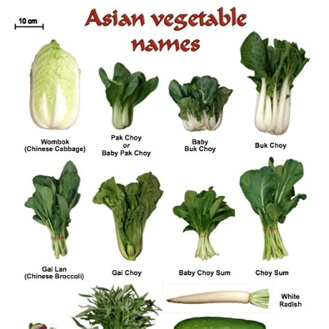 vegetables used in food asian vegetables names gousto vegetables