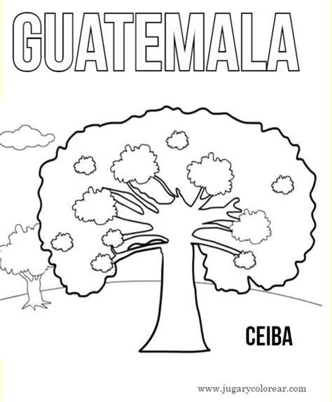 arbol de ceiba para colorear dibujos para pintar y colorear de guatemala