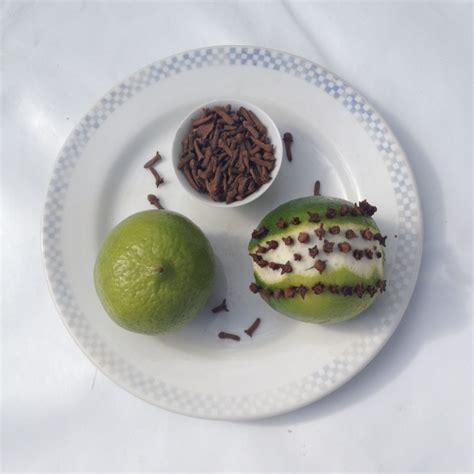 Citron Clou De Girofle Odeur by L Anti Moustiques Au Clous De Girofle 1000 Astuces