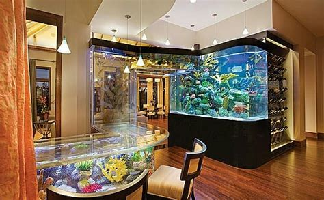 home fish tanks amazing fish tank furniture sweet tanked