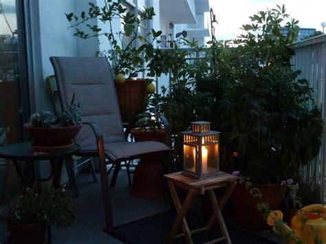 balcony garden tropical patio miami