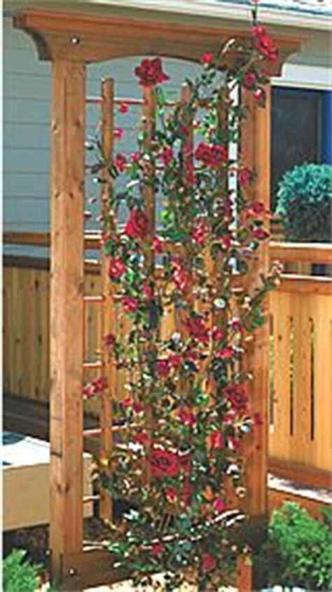 plans to build wooden rose trellis plans pdf plans 1000 images about garden trellis on pinterest trellis