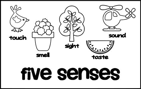 5 Senses Coloring Pages by 5 Senses Coloring Pages Printable Free Coloring Books
