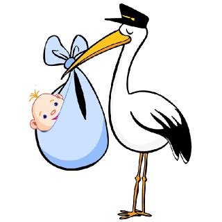 Baby Boy Stork Clipart stork carrying baby boy baby images