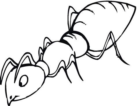 dibujos infantiles para colorear de hormigas dibujos de hormigas para colorear y pintar