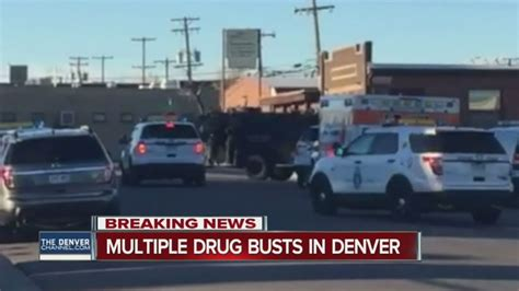 Denver Warrant Search Illegal Marijuana Grows Targeted In Denver Swat Operation Denver7