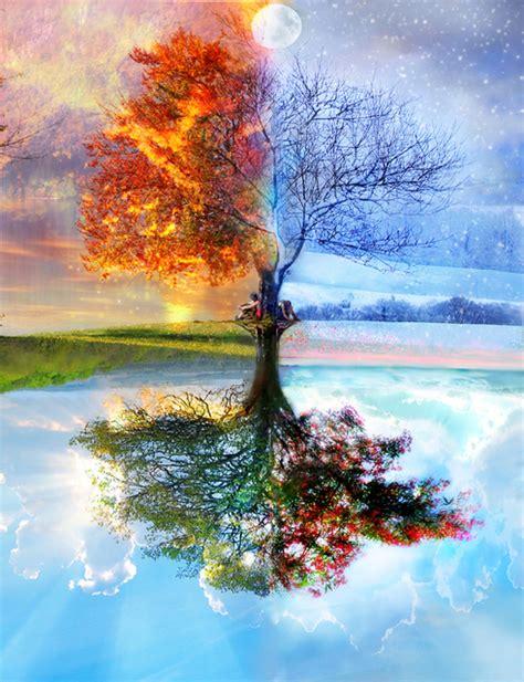 tree seasons come seasons the seasons in the heart ecstatic love