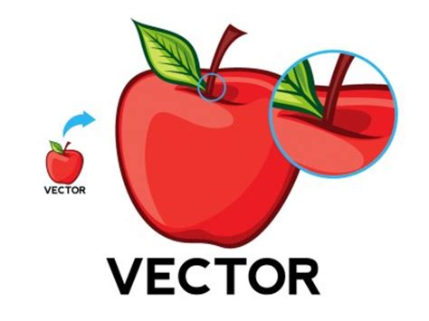 exle of vector why you should use vector graphics bitmap images