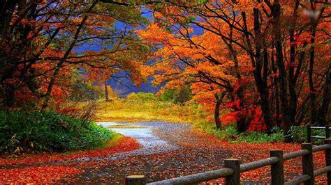 imagenes naturales definicion bellos paisajes naturales imagen en hd 3 hd wallpapers