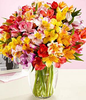 Free Vase Proflowers by Proflowers Coupon Codes Proflowers Promotions And