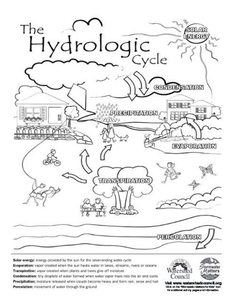 Hydrologic Cycle Worksheet by 9 Best Coloring Pages Images On For