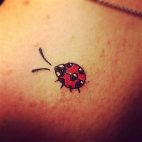 bug tattoo designs 25 best ideas about ladybug tattoos on