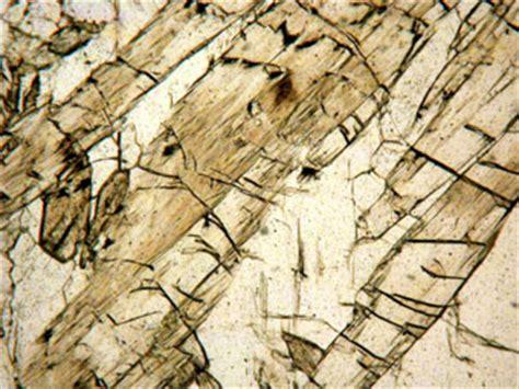tremolite thin section tremolite actinolite