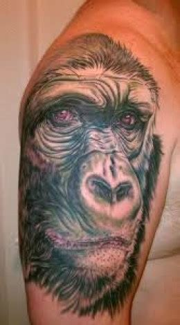 gorilla tattoo meaning gorilla tattoos and designs gorilla meanings and