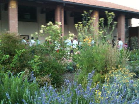 cascina rosa corsi cucina orti sinergici e qualit 224 suolo giardini in viaggio