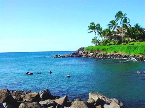 koloa boat landing dive center for sale kauai hawaii resort dive center