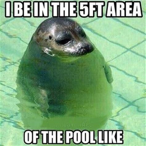 Funny Short Memes - best 25 short people memes ideas on pinterest short