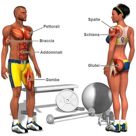 aumentare la massa muscolare a casa esercizi per aumentare la massa muscolare esercizi per