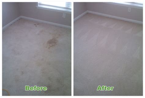 upholstery cleaning charlotte charlotte carpet cleaning cleaner carpet concepts