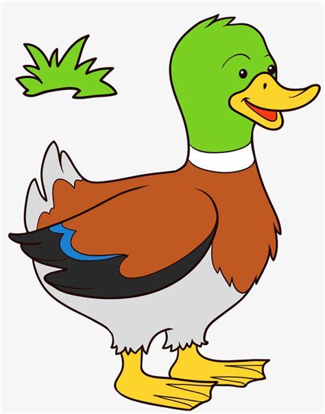 dibujos para colorear de patos pato dibujo color www pixshark com images galleries