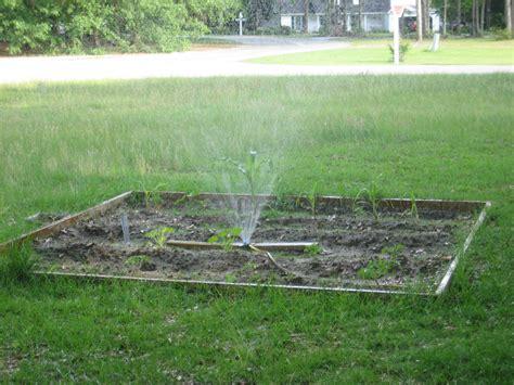 backyard irrigation system sprinkler irrigation system in garden images